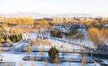 2017年12月7日夜,山东青岛迎来入冬第一场雪,晚上10点半左右飘起晶莹的雪花,大约持续半个小时。