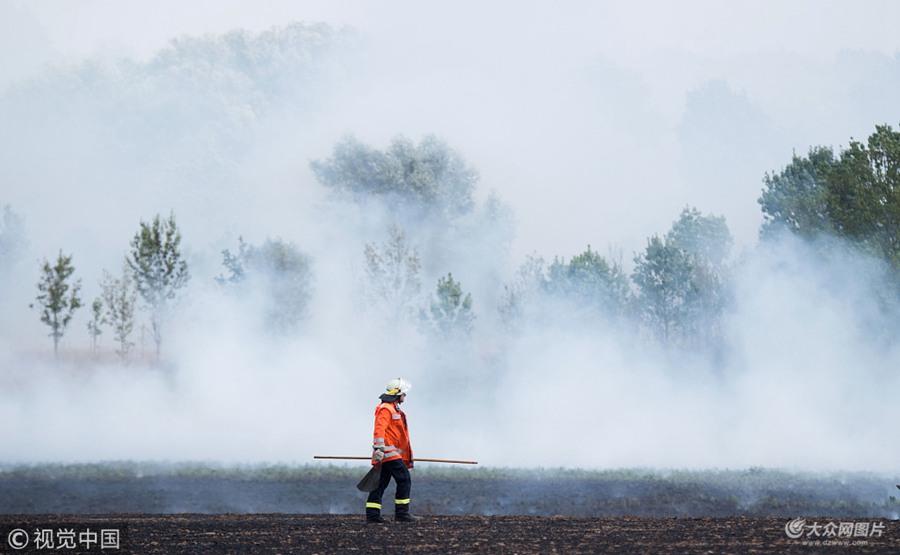 德国持续高温干旱野火丛生