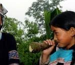 六月六:布依族的传统佳节