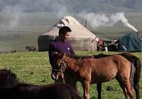 吐尔汗别克喜欢马