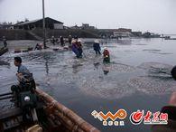 京族群众在收获海蜇