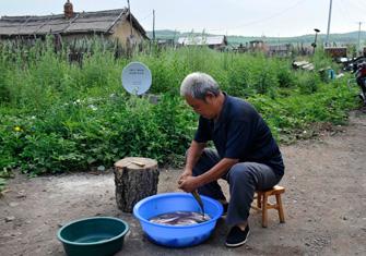鄂英祥老人在院子里杀鱼