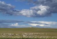 草原,我的家