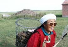 我的蒙古族阿妈