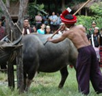 佤族祭祀――祭龙摩爷