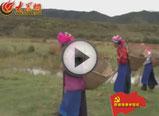 路边捡粪藏族女子演唱《北京的金山上》