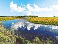 关注环境保护 共建生态文明