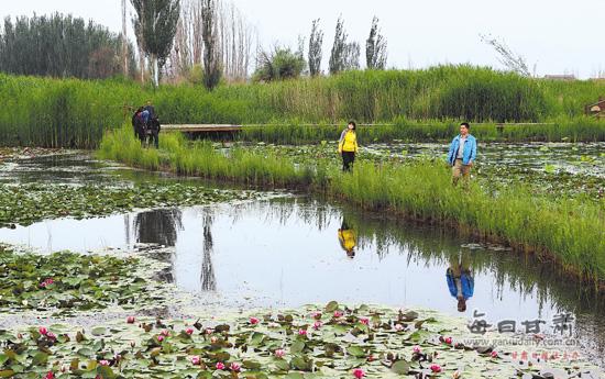 湿地生态和湿地文化成为张掖旅游名片(图)