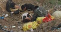 定陶挖蒜农民翻车致4死12伤 伤者已住院两名仍危险