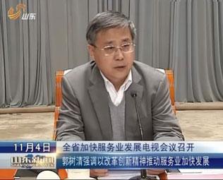 山东省召开加快服务业发展电视会议
