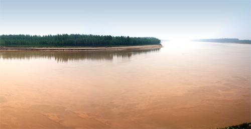 2010年齐河黄河沿岸风景区于被水利部评为国家级黄河水利风景区.