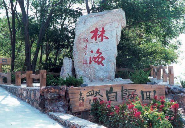 庙岛林海公园位于长岛县城东南端,北含烽山凌空的鸟展馆,南衔玉滩堆