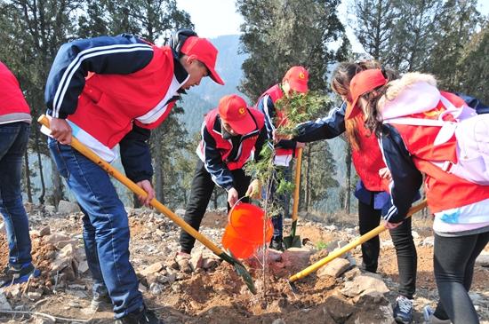 青年志愿者踊跃参加植树造林活动