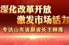 王随莲谈深化医改 下沉医疗资源破解看病难