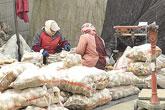 农批市场的繁忙三日