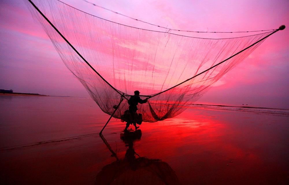 2014年5月1日,山东省日照市,一渔民背着虾网正在行走。虾网如同一个大簸箕,高达5米多。(日照站 李佩强 摄)