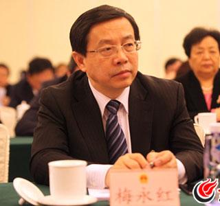 """梅永红:破解""""信权不信法"""",法制建设重在队伍建设"""
