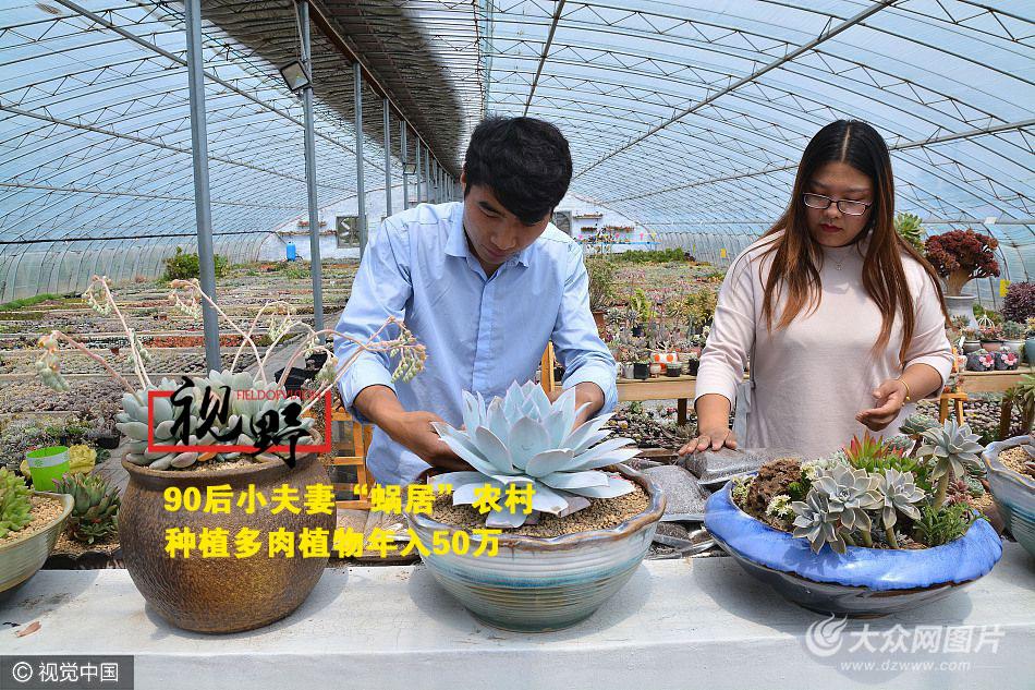 2017年4月20日,在日照市莒县陵阳镇借庄村一处多肉大棚里,张永振和王枫正在整理几盆多肉植物。