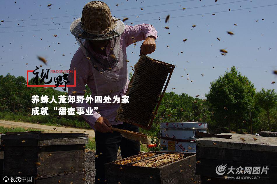 """伴随着花开,养蜂人会不辞劳苦,带着""""百万大军""""辗转异乡追随花期,只为成就一种人间的自然美味——蜂蜜。"""