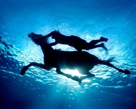 奇妙的水下摄影