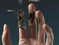 看完这些图你还想抽烟吗?