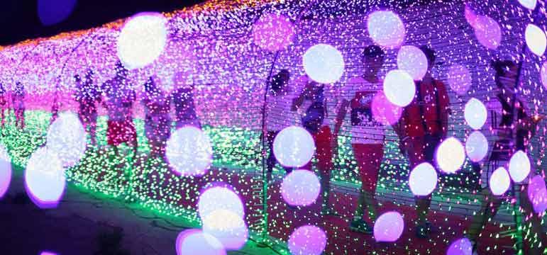 滨州:炫彩灯光节美轮美奂如星辰降临