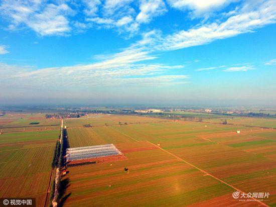 山东茌平:秋种已完成 播种小麦81万亩