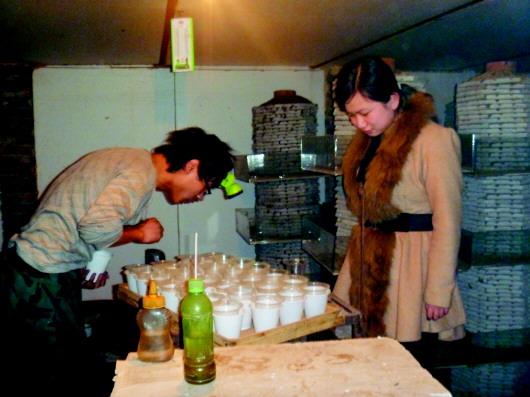 制作蝎窝的方法,对比试验后从中选择了塔式养殖方法