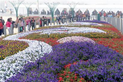 从青岛世园会2号门,3号门进入园区,游客即可领略到花海满园的景观.