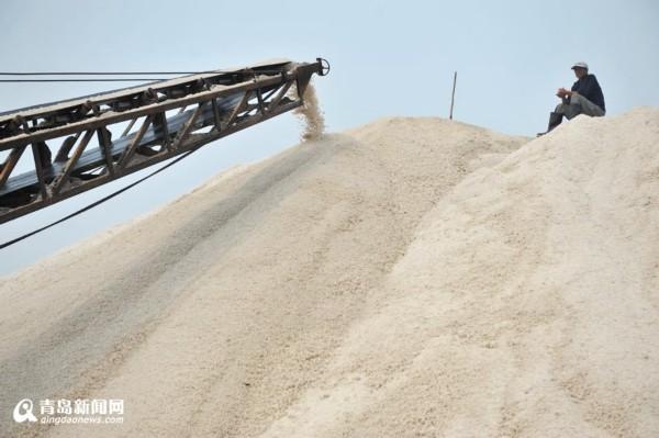 """组图:探访青岛最后的盐场 盐垛堆得像""""银山"""""""