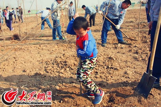 三百余京博义工与小朋友共同植树五千多棵图片