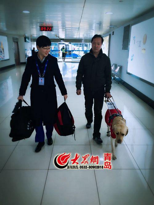 导盲犬也能坐飞机 青岛机场暖心服务盲人
