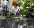 """2016年8月4日午后,上海市闵行区倾盆大雨,但肆意蔓延的雨水并没有阻拦她们。提起""""家庭医生""""诊疗包,全科医生韦莉君和助理张建梅就出发了。在龙柏社区卫生服务中心,她们是一对好搭档。"""