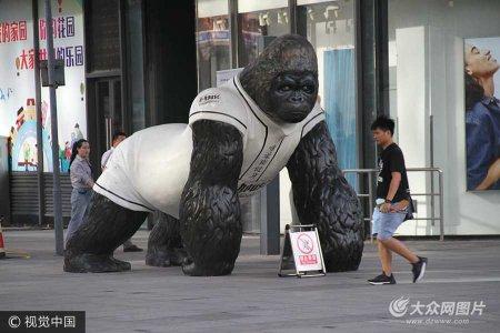 """2017年9月15日,在济南泉城路上,出现一只巨型""""大猩猩""""走上大街,吸引众多市民的眼球。"""
