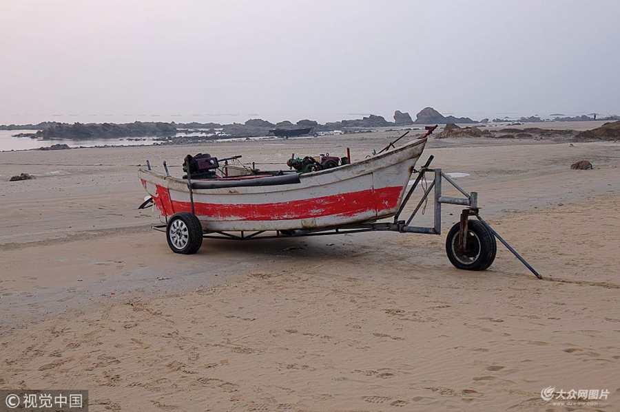 """青岛:小渔船""""驶""""上海滩越冬成一景"""