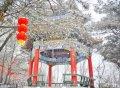 2018年2月21日,山东临沂,春节假期的最后一天,便随着雨雪降临,沂蒙山云蒙景区出现了雨雪雾凇景观。