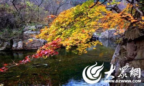 登山祈福赏红叶—五莲山景区市民免费周惠民嗨起来!