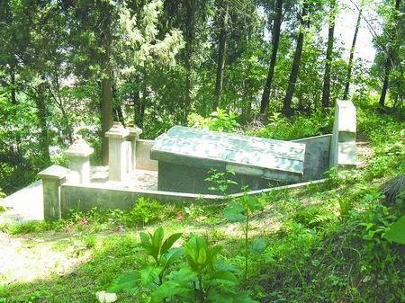 河南一国家森林公园遭墓地吞噬
