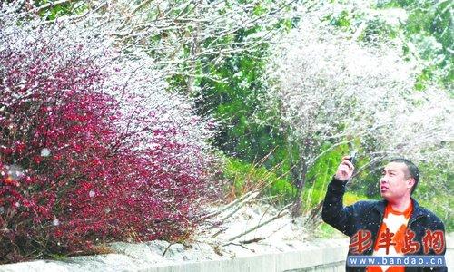 而山上的气温相对来说更低,很多花草树木还没有发芽,山上景色并不是