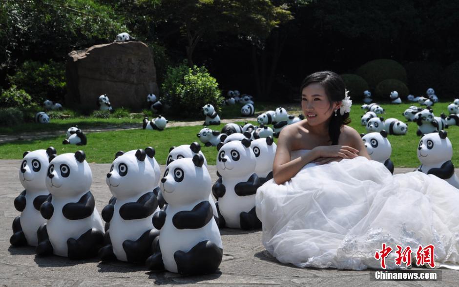 """7月30日,800只使用环保材料制作的""""熊猫""""亮相无锡鼋头渚景区。"""