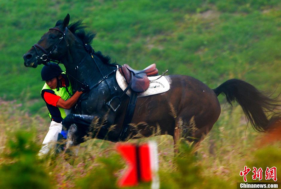 9月10日的雨后沈阳,内蒙古骑手张睿在第十二届全运会马术团体三项赛个人越野障碍中,跨栏腾跃后意外坠马。中新社发 贾国荣 摄