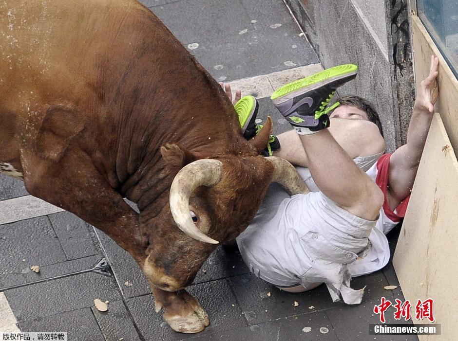 当地时间2014年7月14日,西班牙潘普洛纳奔牛节持续。据外媒报道称,截至14日共有两名参赛选手在奔跑中被牛角顶伤。