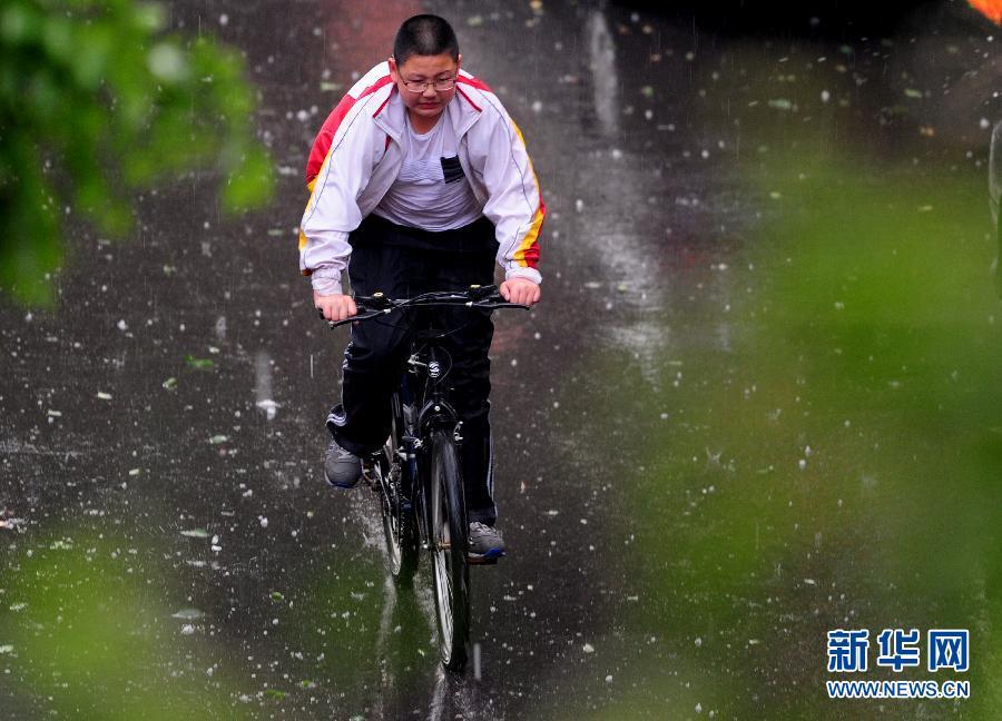 5月21日,沈阳市一名学生在暴雨冰雹天气下出行。
