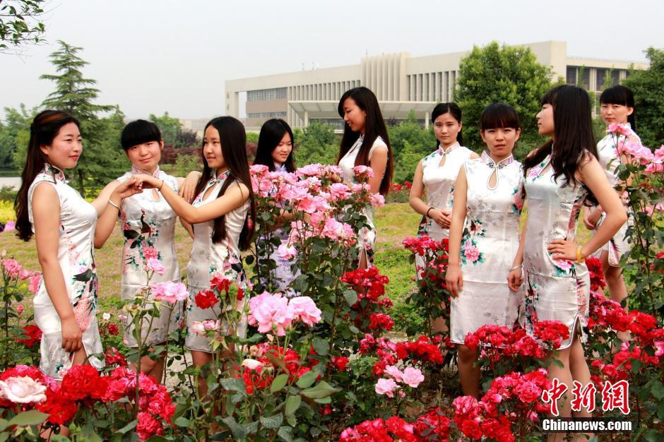 又是一年毕业季,西安财经学院商学院人力资源管理专业学生拍摄了一组另类毕业照,女大学生们穿着婉约旗袍装,摆出不同的造型,纪念即将逝去的美丽校园时光。中新社发 张远 摄
