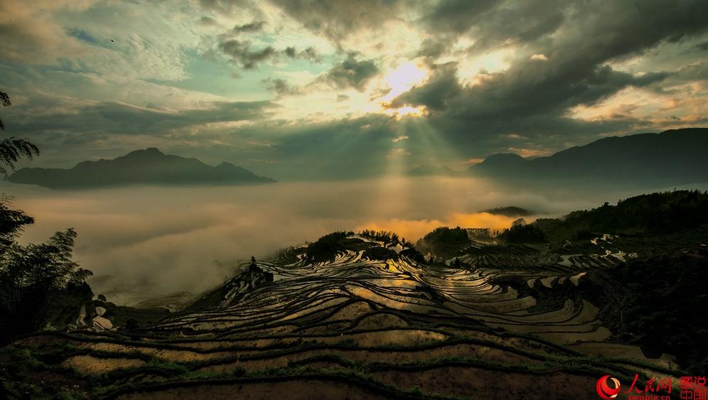 """云和梯田是华东地区最大的梯田群,被称为""""中国最美梯田""""之一。""""云雾奇观,浮云世界""""是云和梯田的一大特色亮点。"""