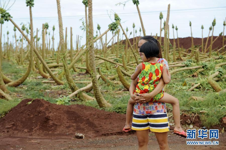7月19日,在广东湛江徐闻县海安镇塘西村,一位村民抱着孩子站在被台风损毁的大片木瓜林前。
