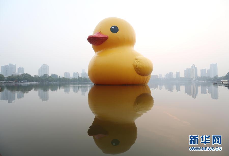 """10月20日,""""大黄鸭""""漂浮在南京莫愁湖上。当日,由荷兰艺术家霍夫曼设计的正版""""大黄鸭""""亮相南京莫愁湖,与游人见面。 新华社发(王新 摄)"""