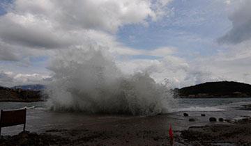 """台风""""天鹅""""致青岛沿海涌巨浪"""