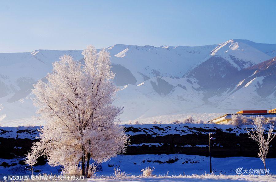 2015年10月31日,新疆巴里坤,2015年冬第一场雾凇美景出现在天山脚下的新疆巴里坤古城。