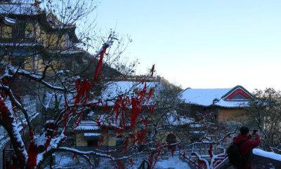 济南再现老舍笔下《济南的冬天》之美